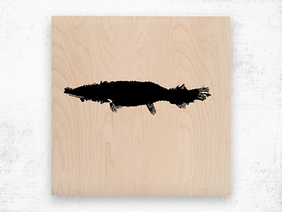 Fossil gar Wood print