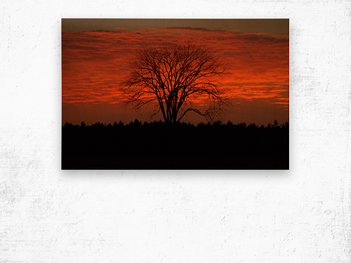 Wisconsin November Sunset Wood County Wood print