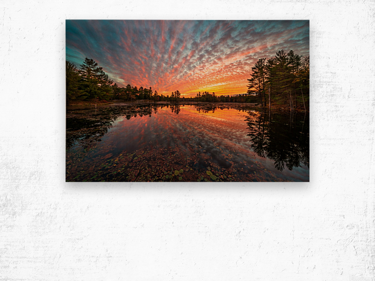 Mountain Rd Pond Wood print