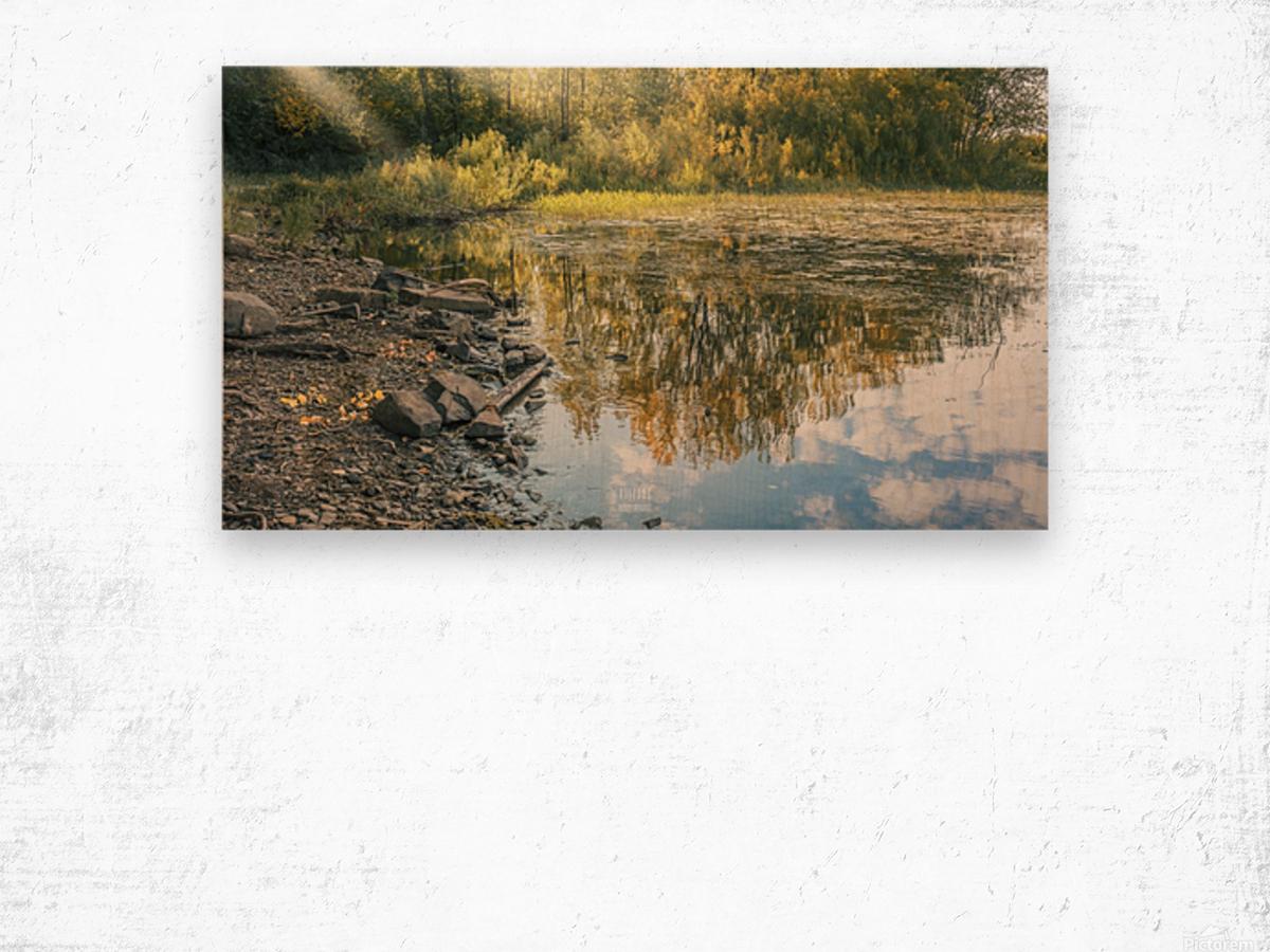 Monet style 4 Wood print
