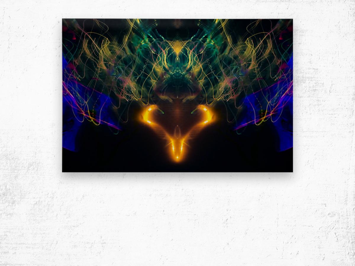 OWL MESSENGER Wood print
