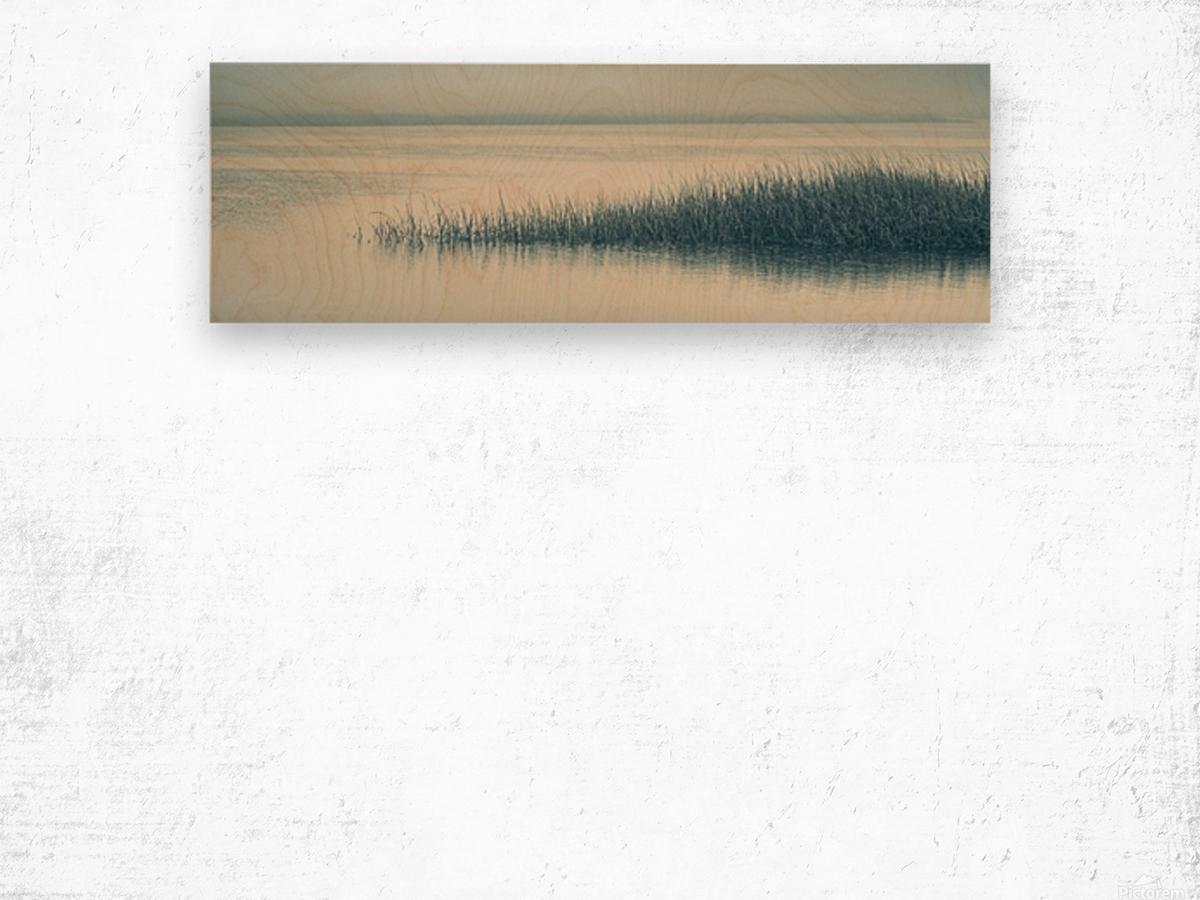 High Tide on the Nonesuch Wood print