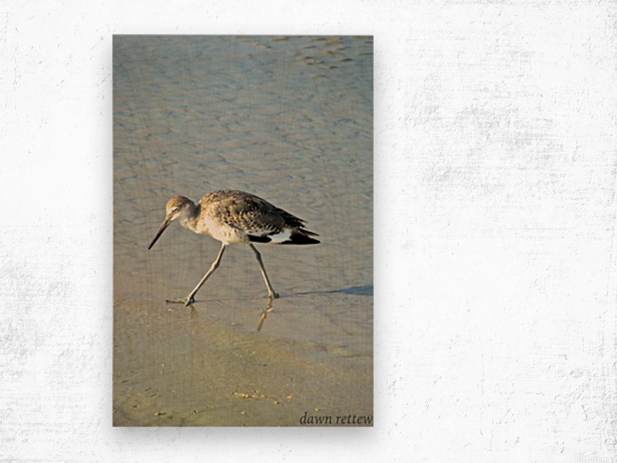 Ba Bum Bird Wood print