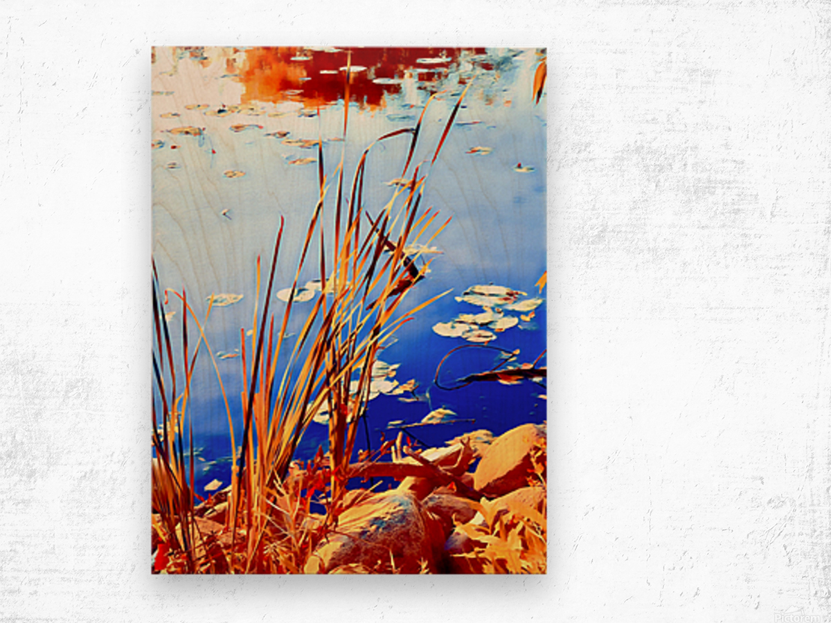 Reed Grasses  Wood print