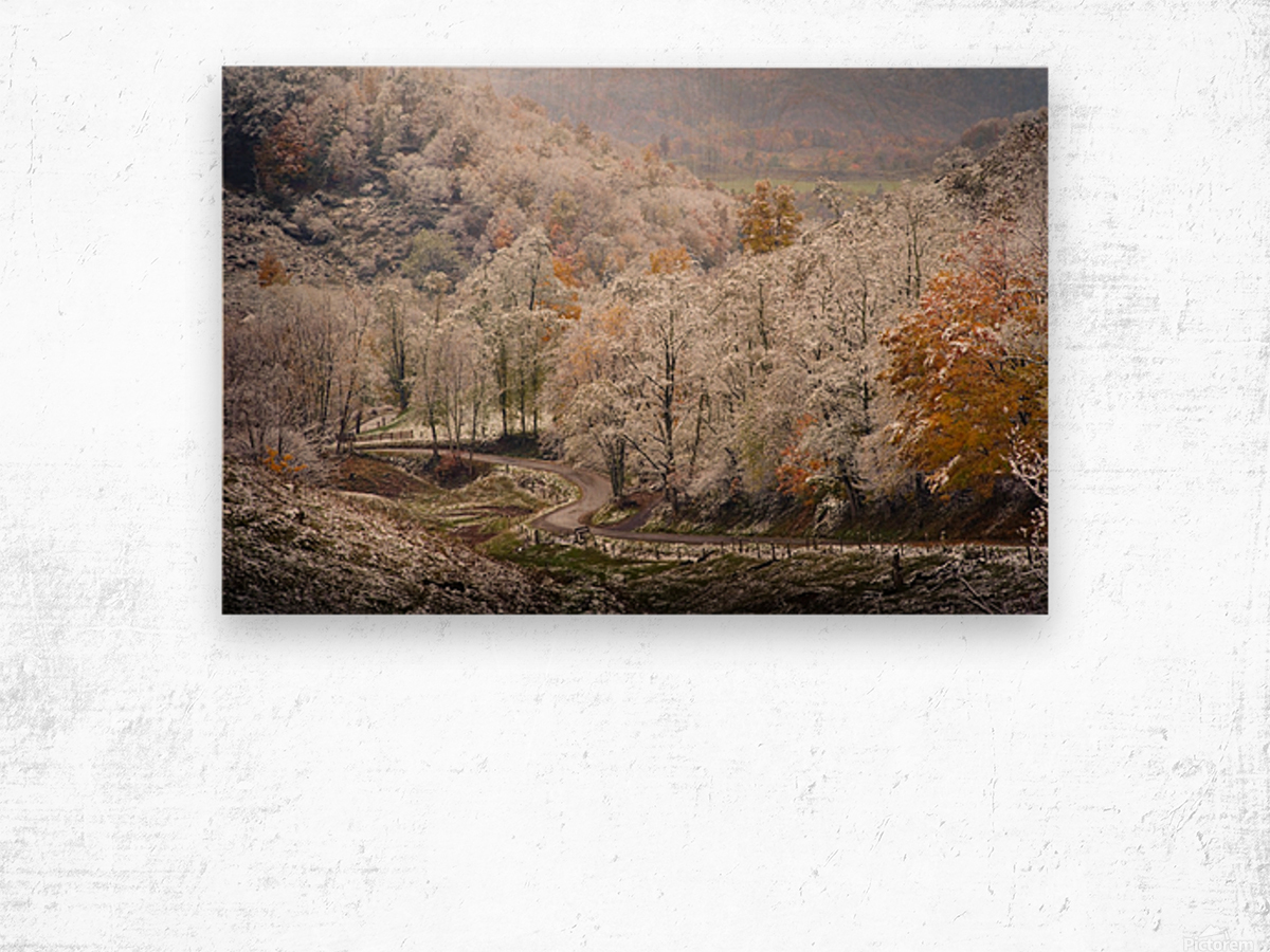 Autumn snow on Back Hollow Road Tucker County West Virginia Wood print