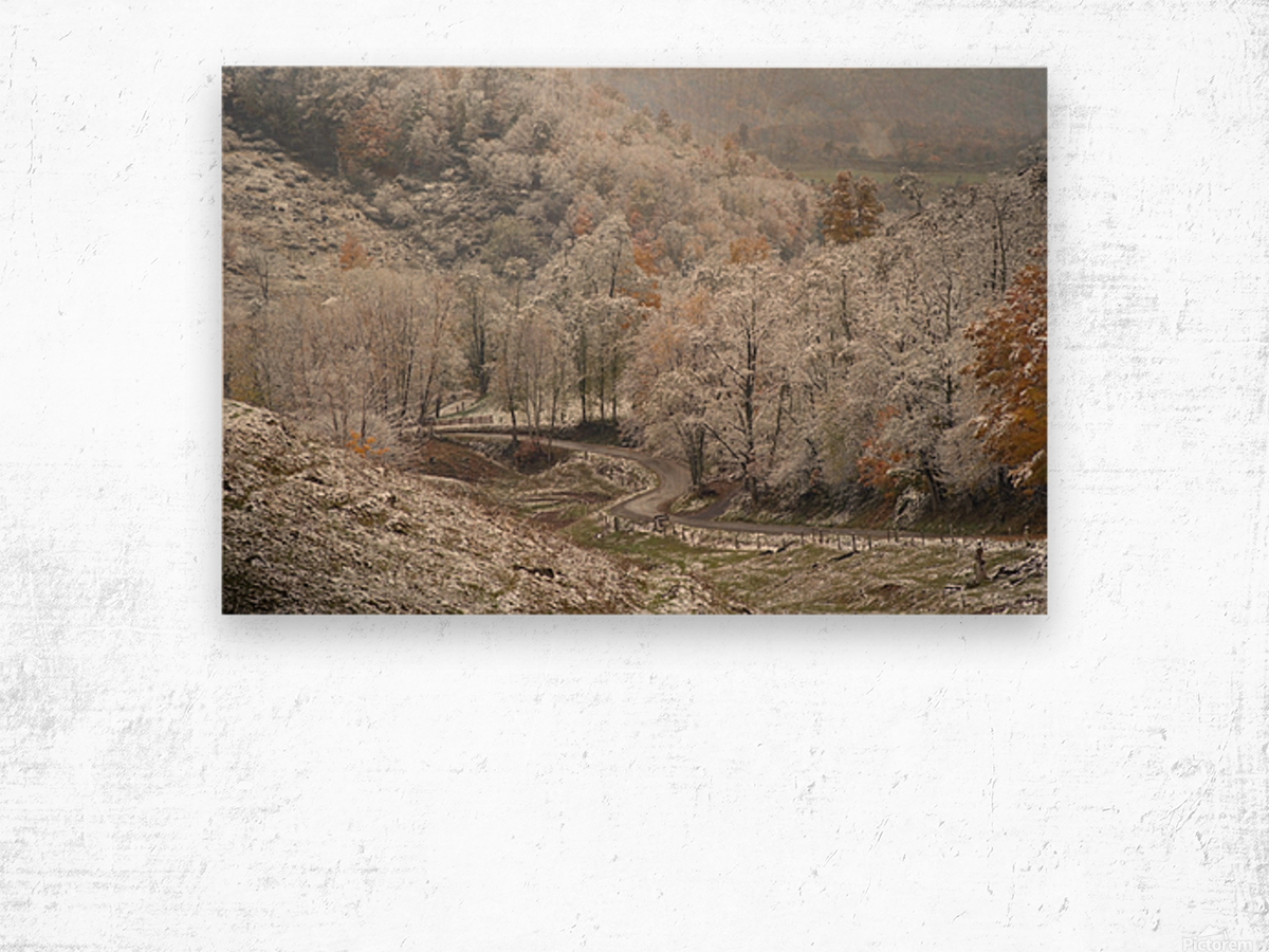 Back Hollow Road Tucker County WV autumn snow Wood print