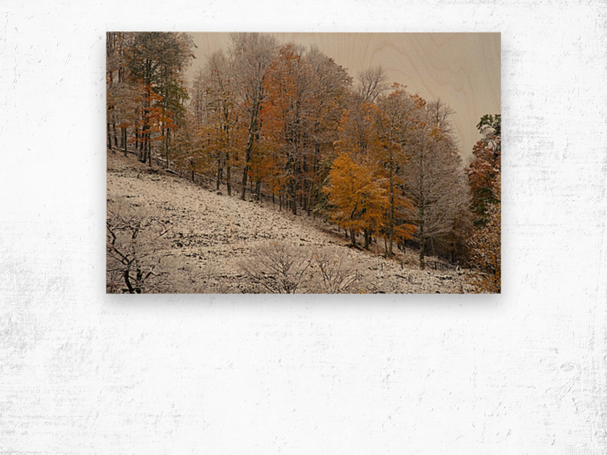 October Snow Canaan Valley WVa Wood print