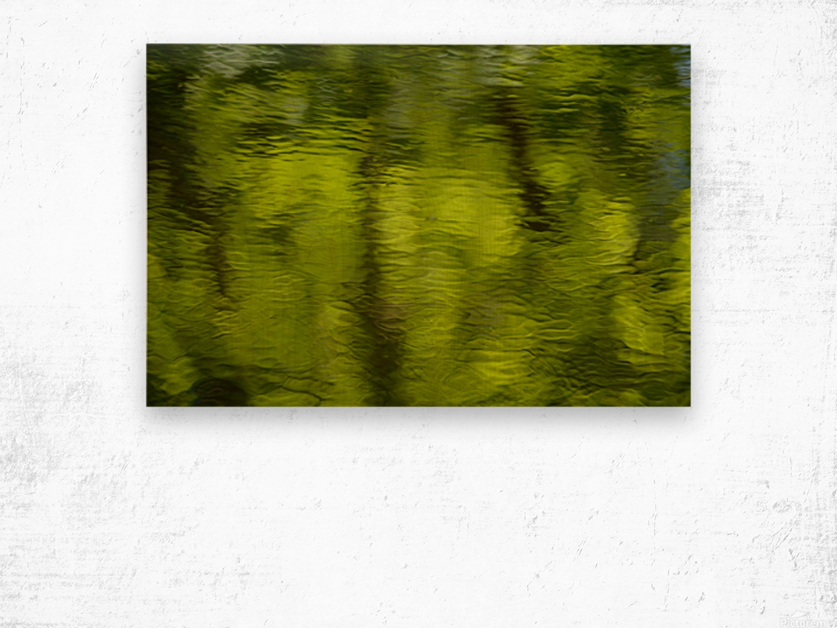 Flowing reflections spring Wood print