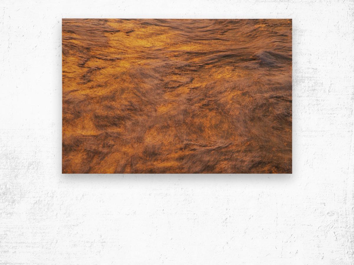 Lake Erie waves 1 Wood print