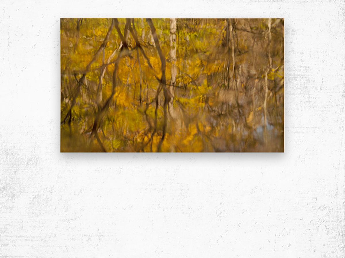 Autumnal swirls reflections Wood print