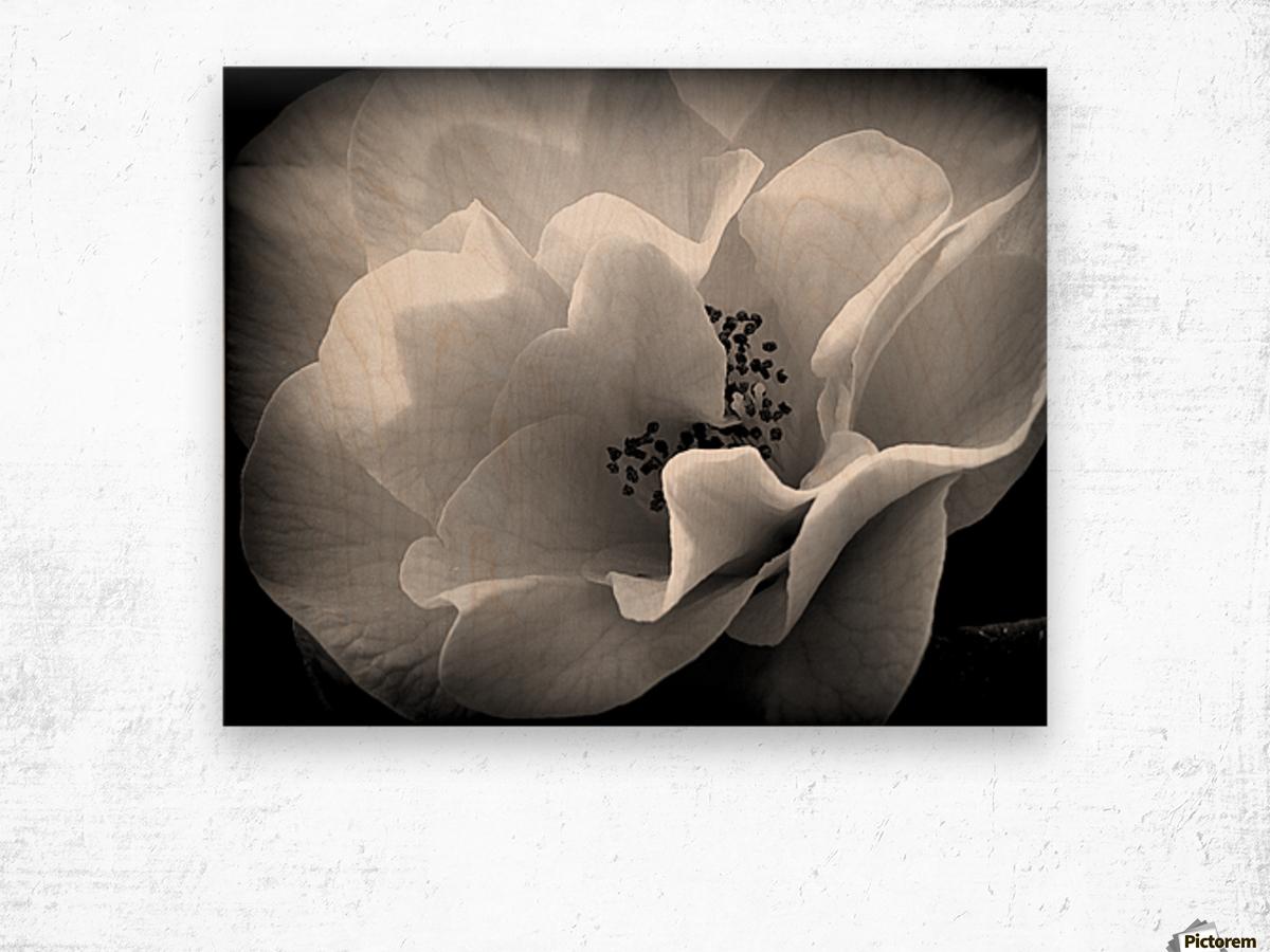Linen  Wood print