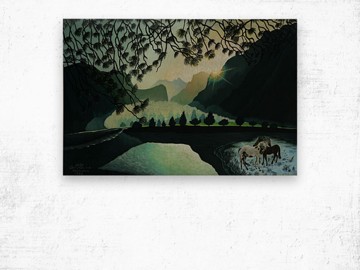 1992 033 Wood print