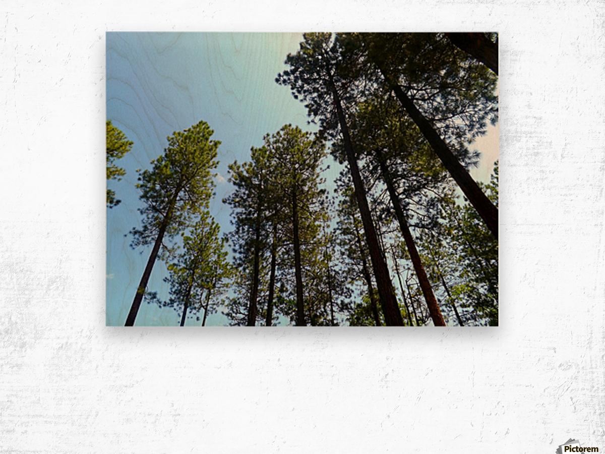 Blue Sky Impression sur bois