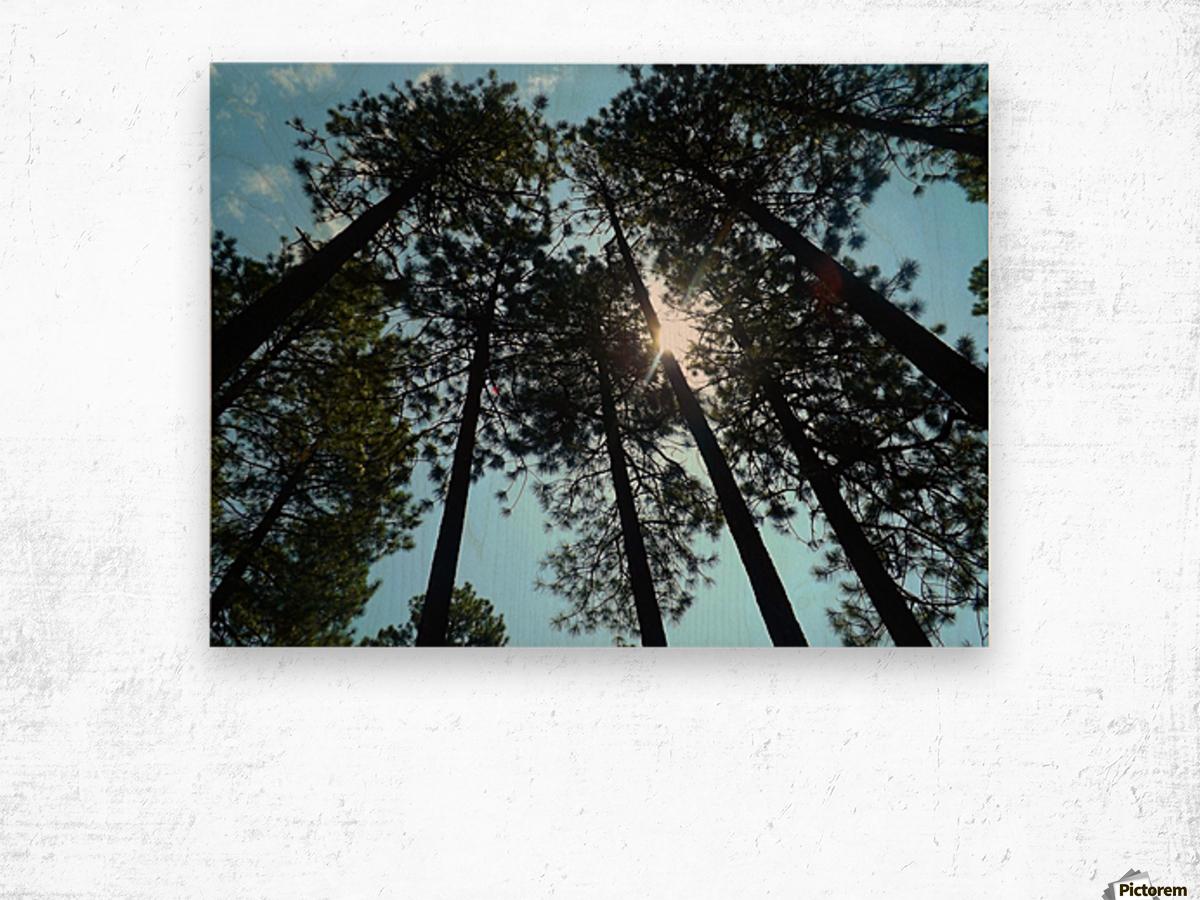 Look Up Impression sur bois