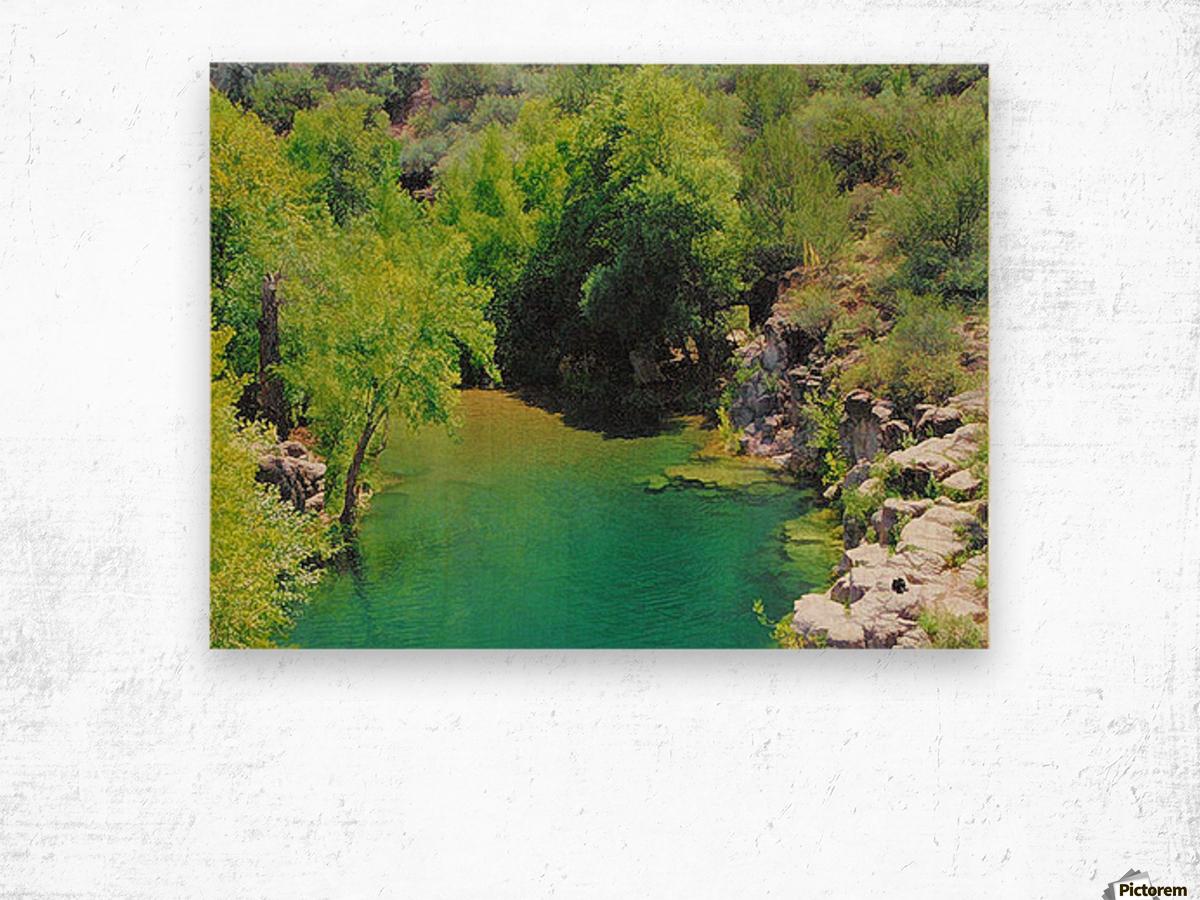 Pond Impression sur bois