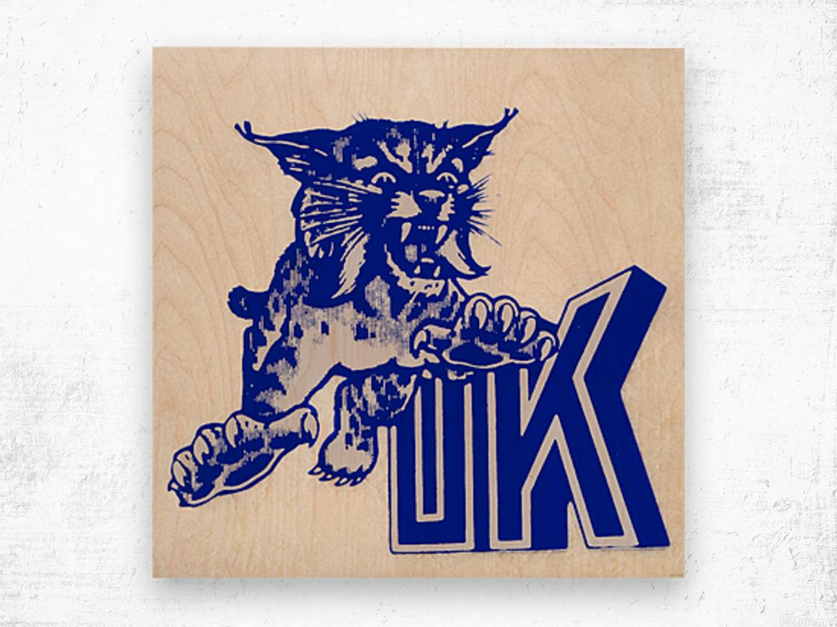 1970s kentucky wildcat Wood print