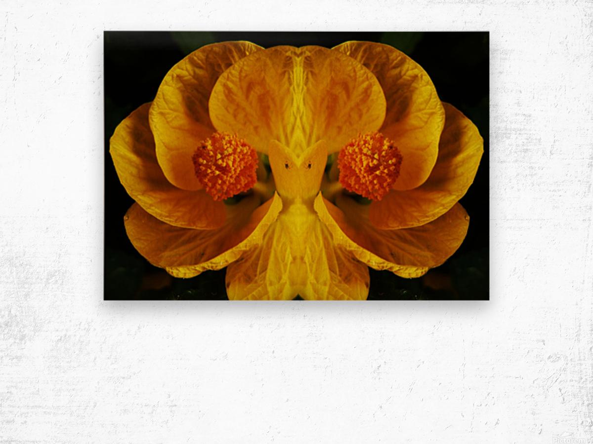 flower91 Wood print