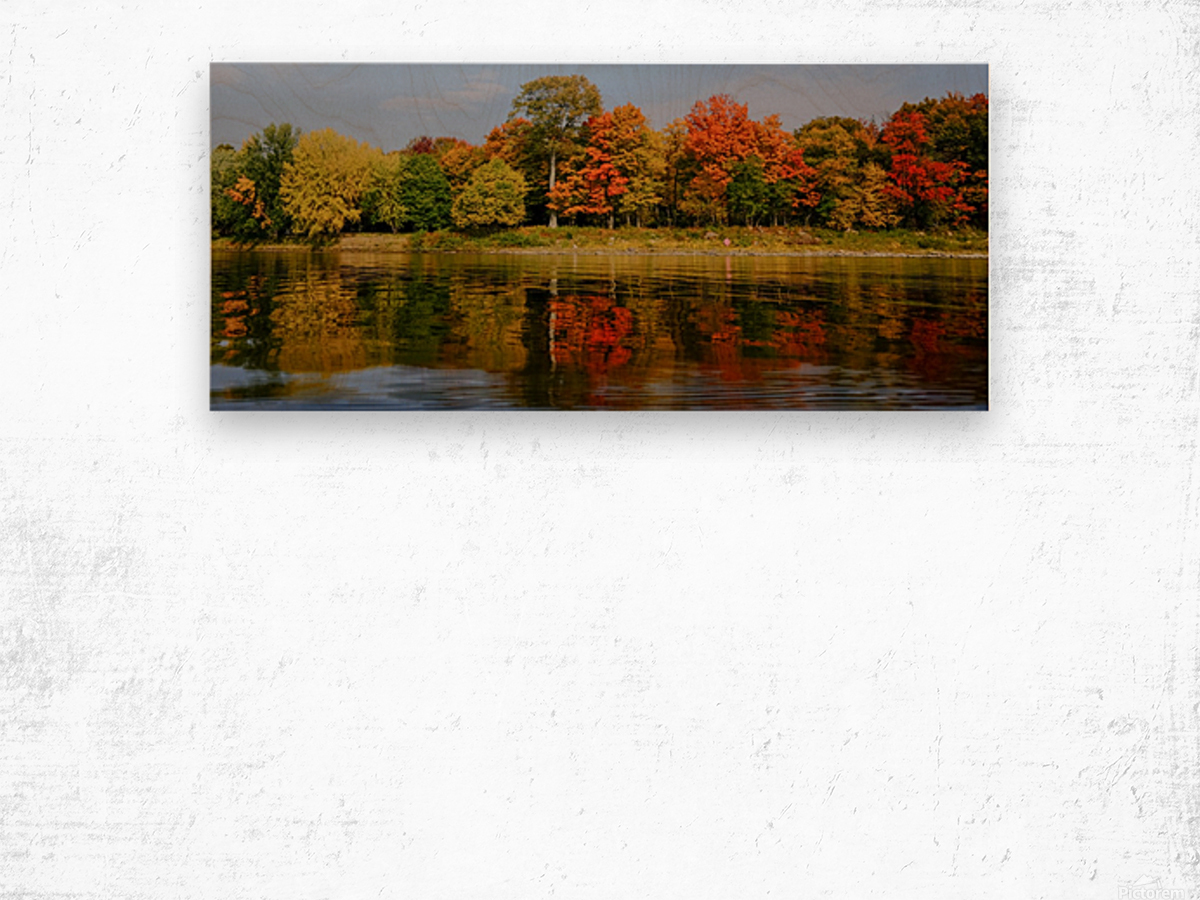 Fall in love with fall Wood print