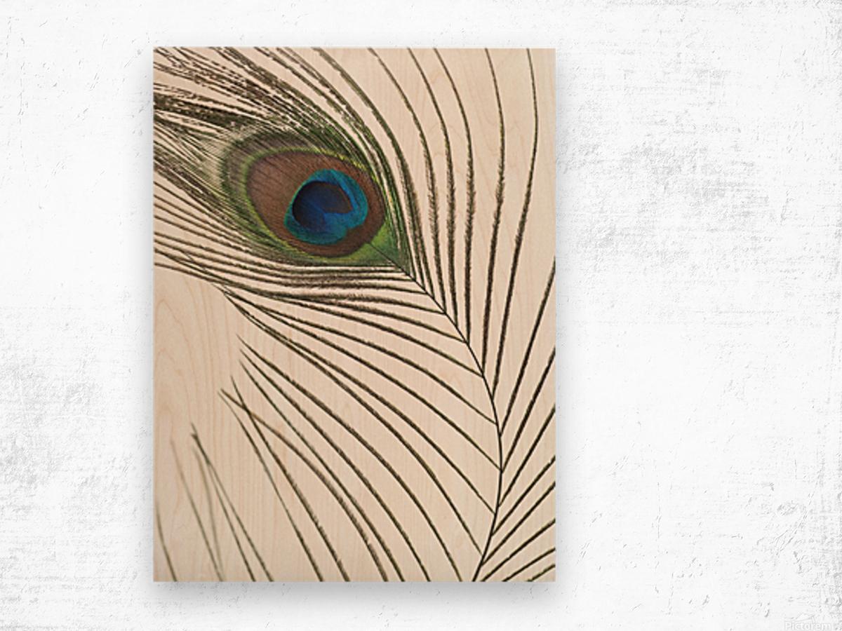 Peacock feather Impression sur bois