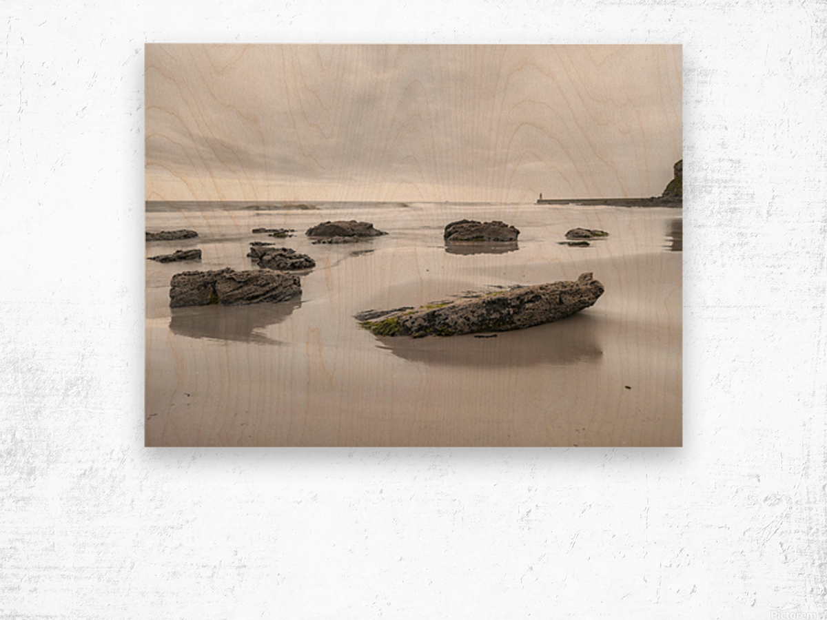Rocks on a sandy beach Wood print