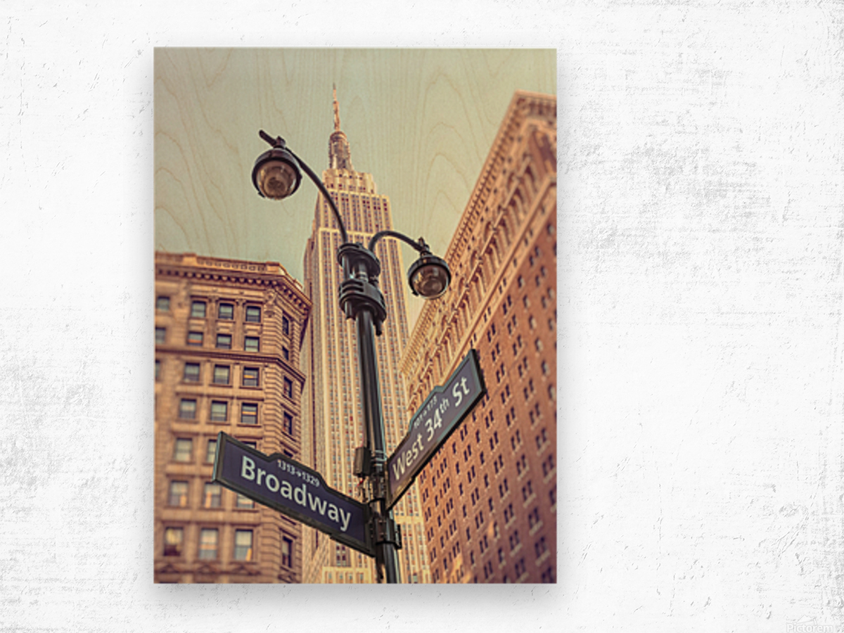 Street lamp and street signs with Empire State building in background - New York Wood print