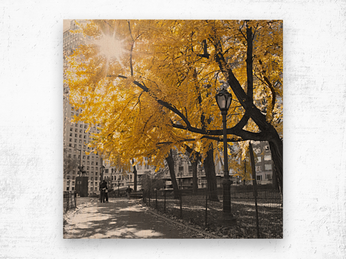 Pathway through Central park, New York City Wood print