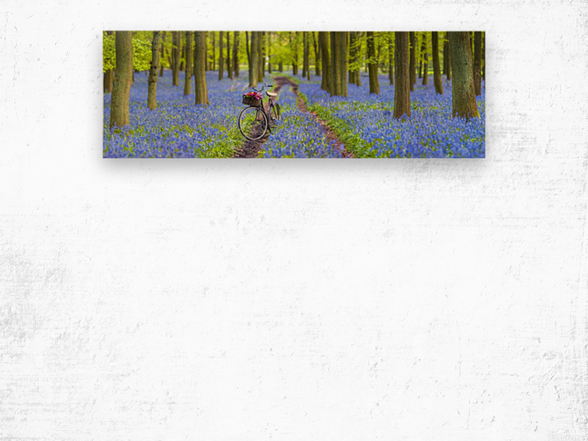 Bicycle in spring forest Wood print