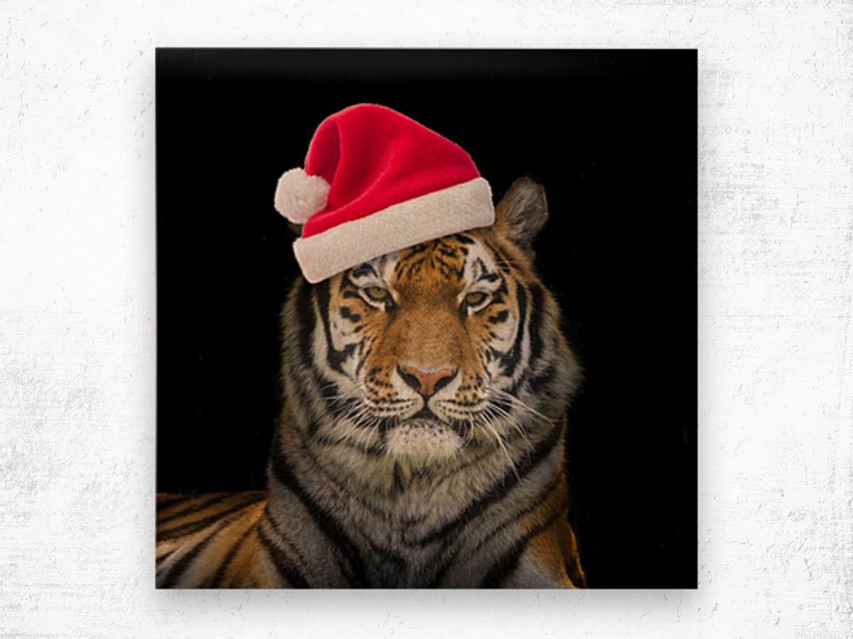 Tiger with Santa hat Wood print