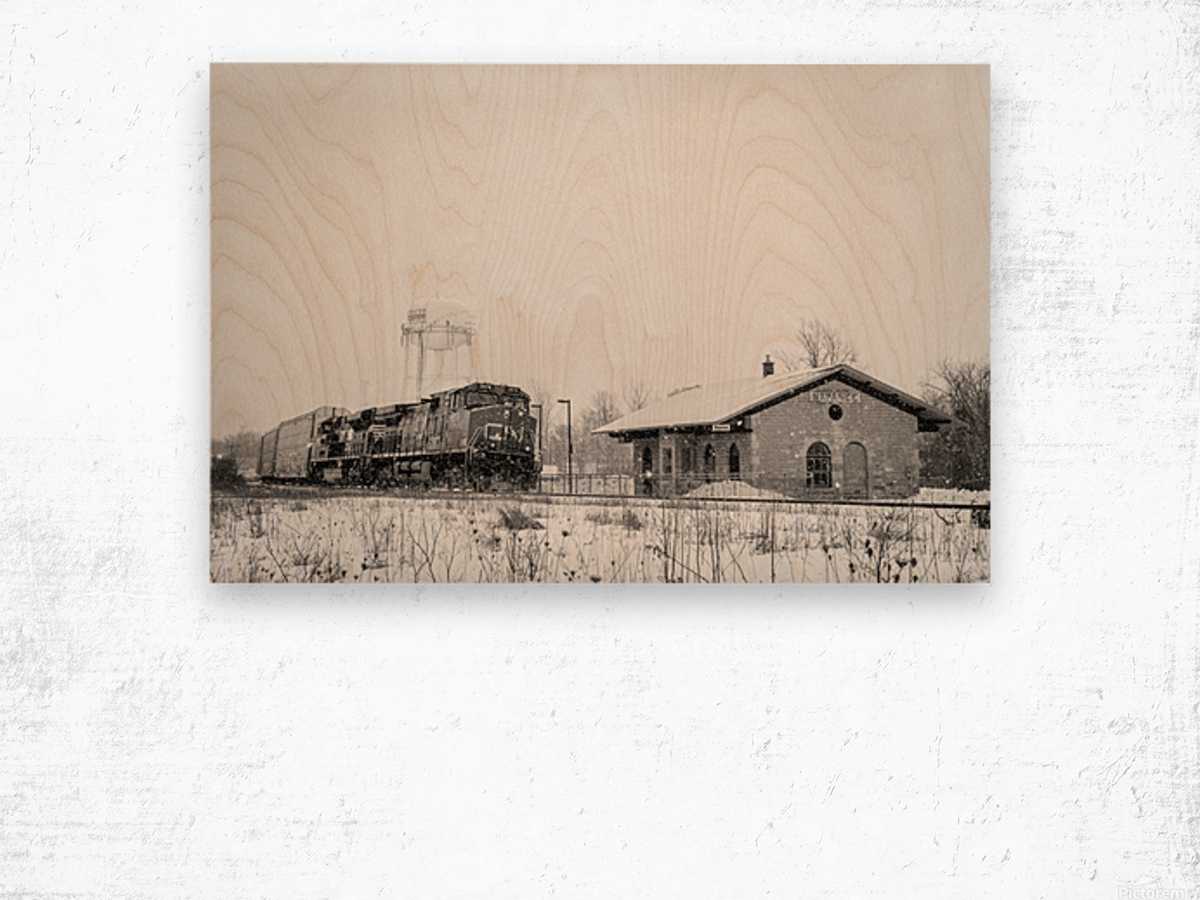Napanee Station Wood print