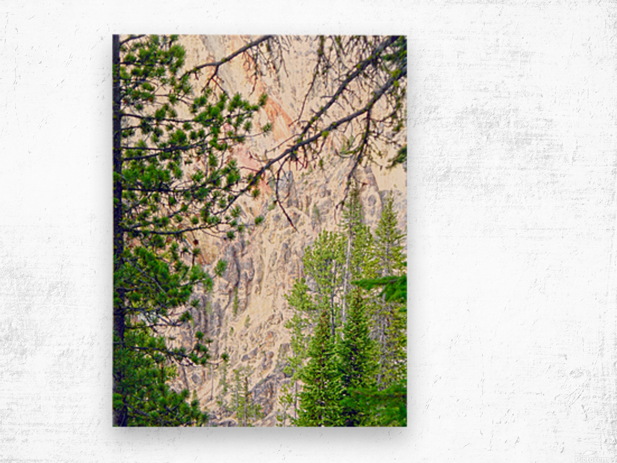 Mighty Yellowstone 4 Wood print