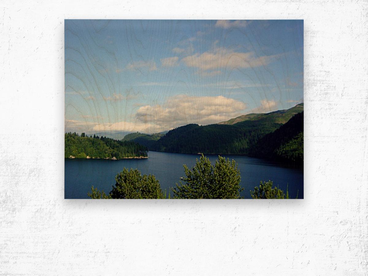 Pacific Northwest Splendor Wood print