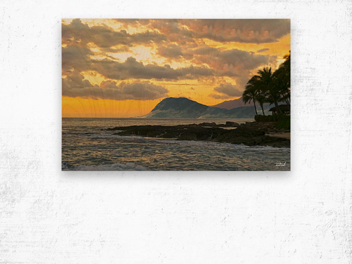 Beautiful Hawaii Wood print