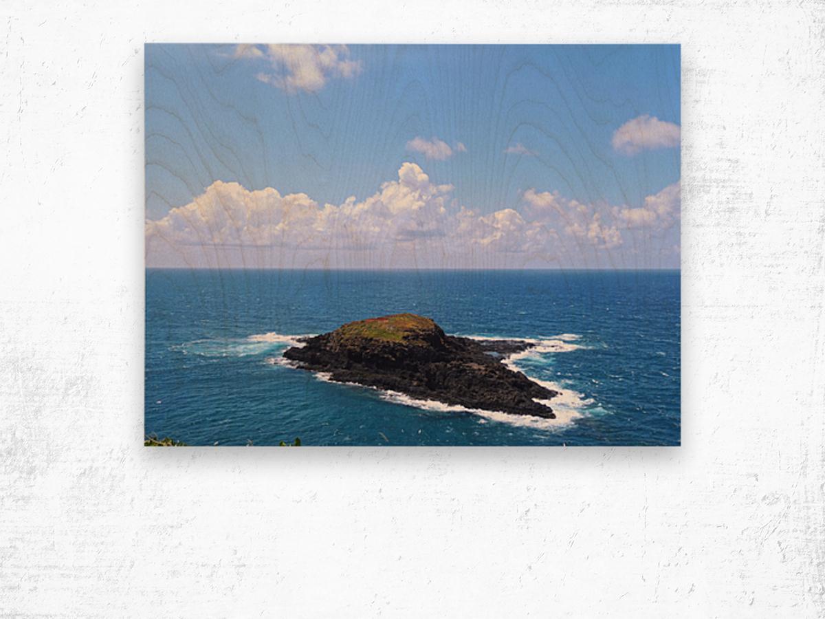 Secret Island Wood print