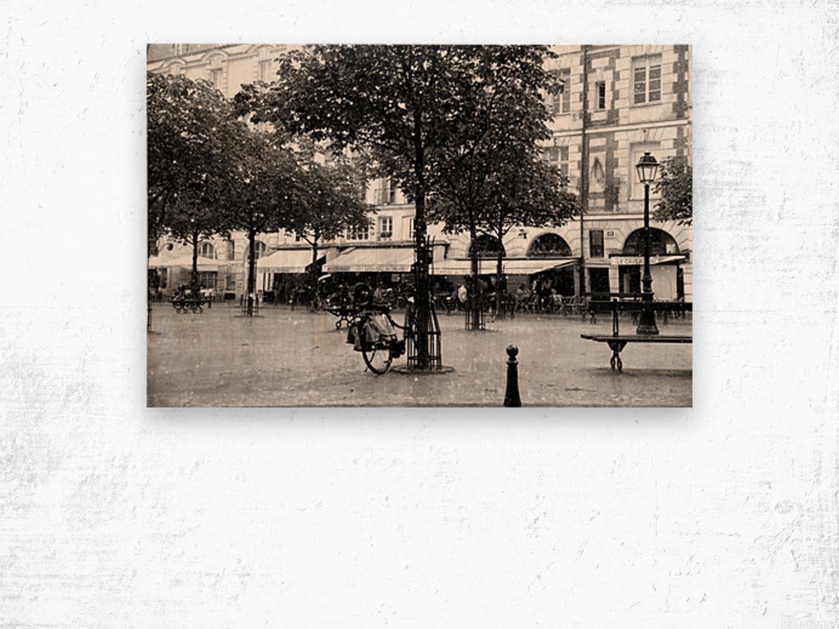 Place du Marche Sainte Catherine Wood print
