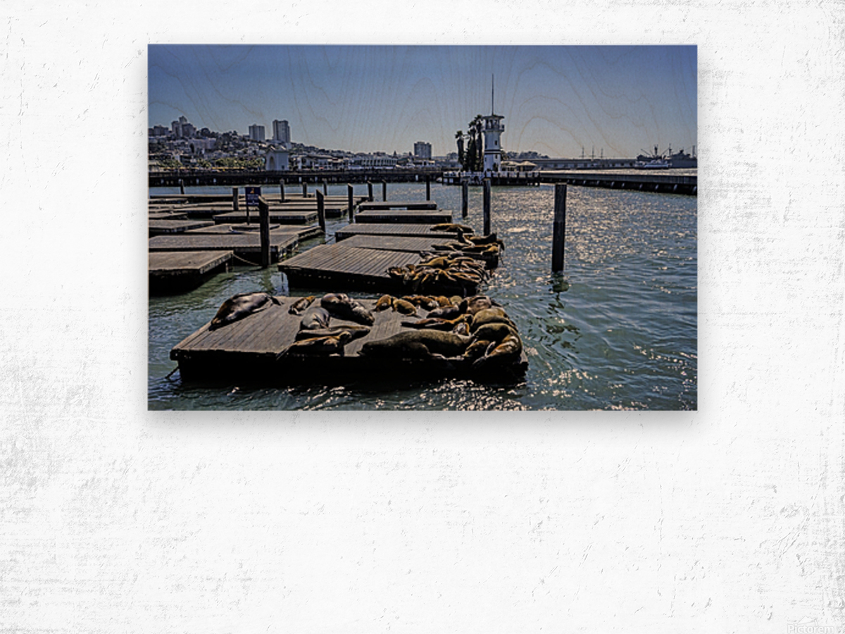 The Wharf @ San Francisco Wood print
