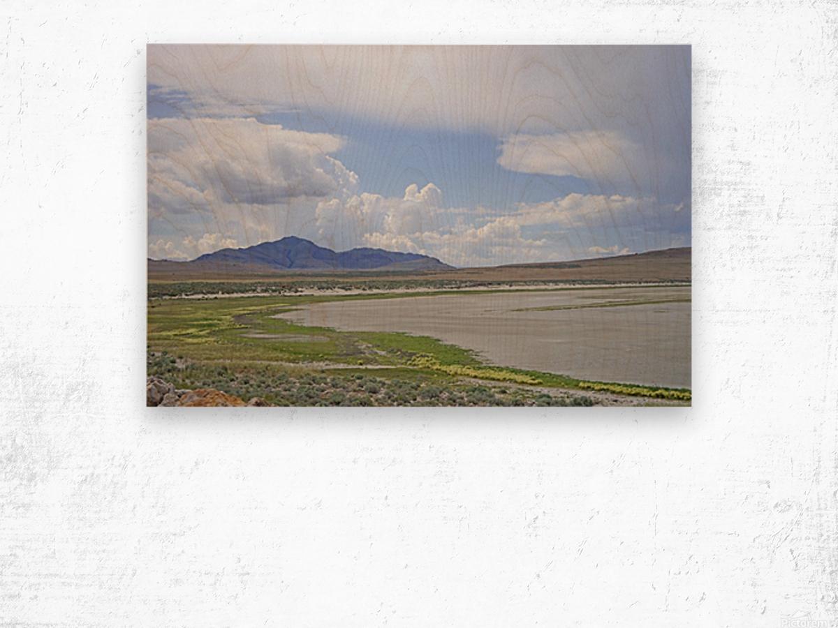 The Great Salt Lake 3 of 7 Wood print