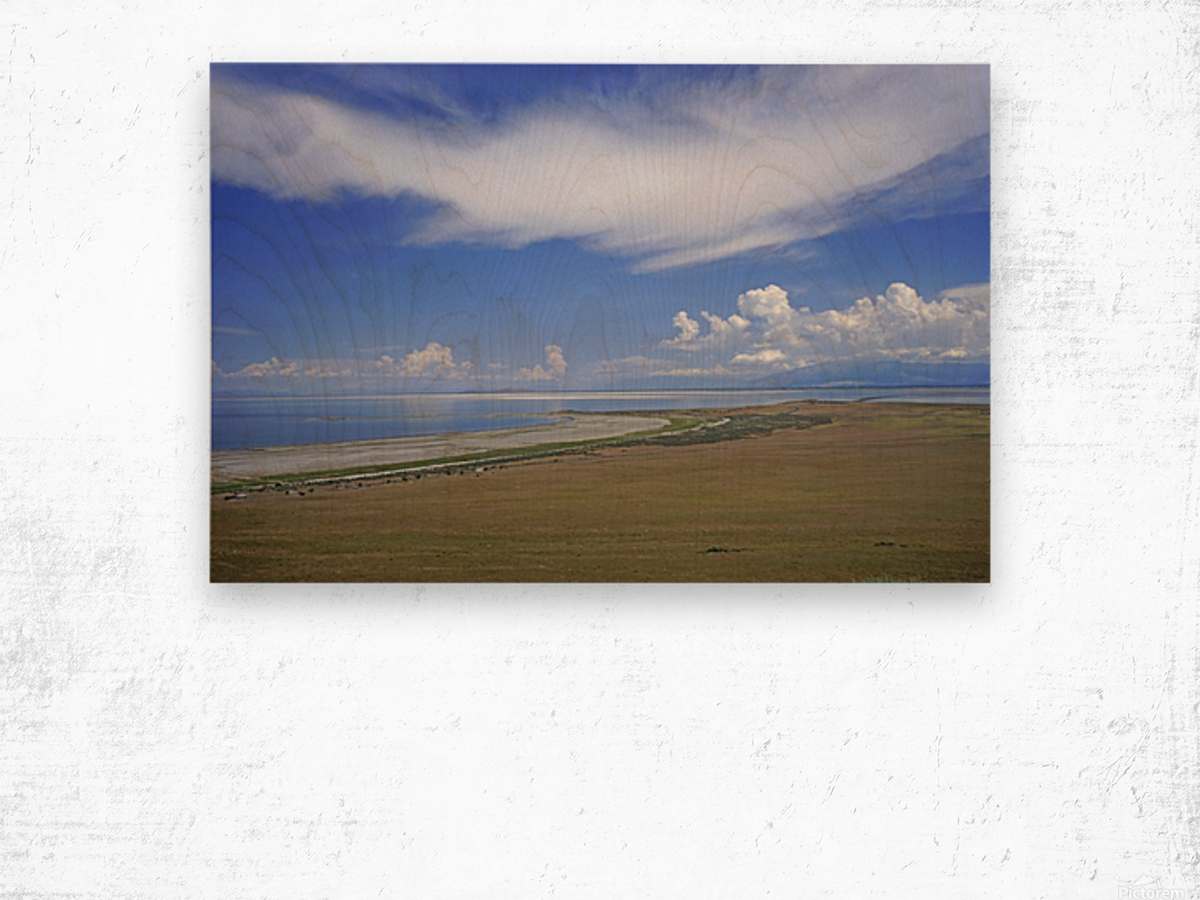The Great Salt Lake 7 of 7 Wood print