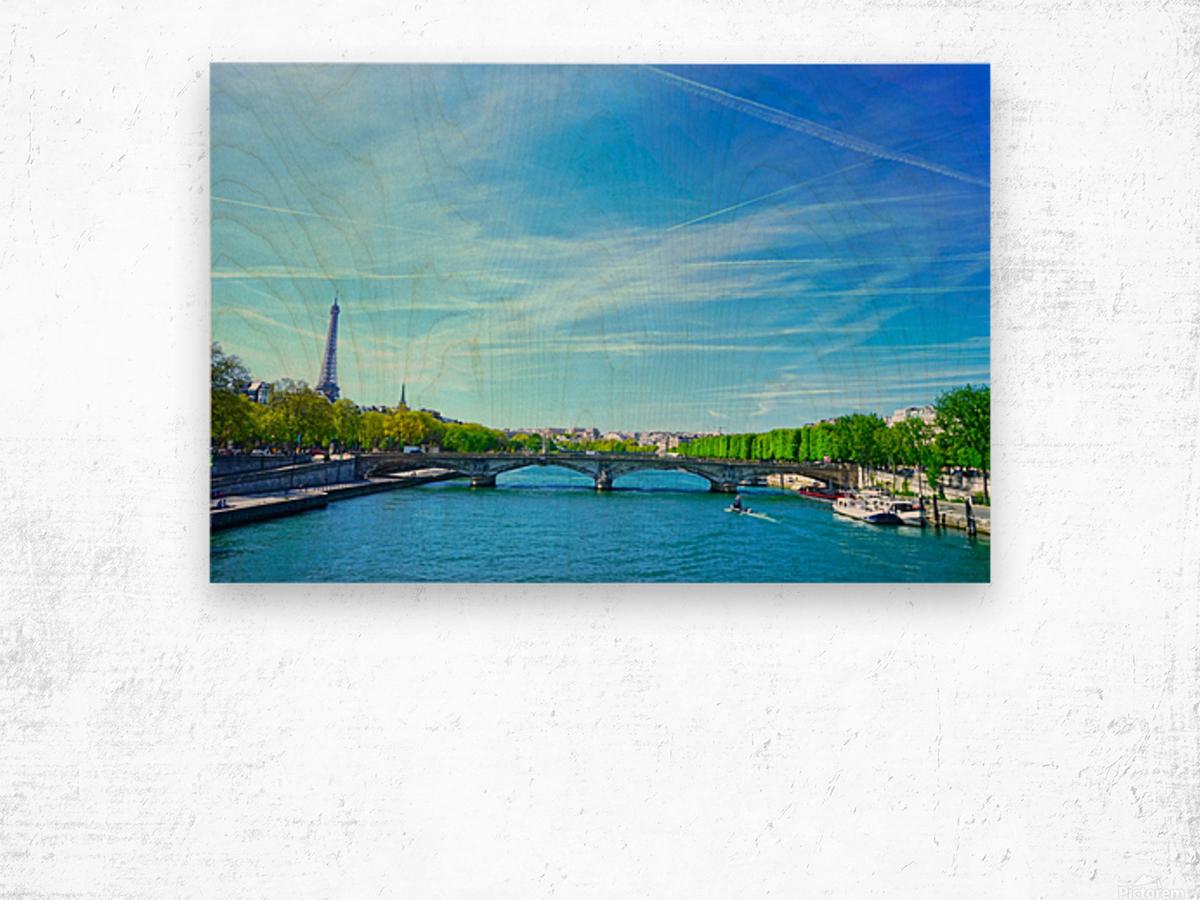 Immortal Paris 5 of 7 Wood print