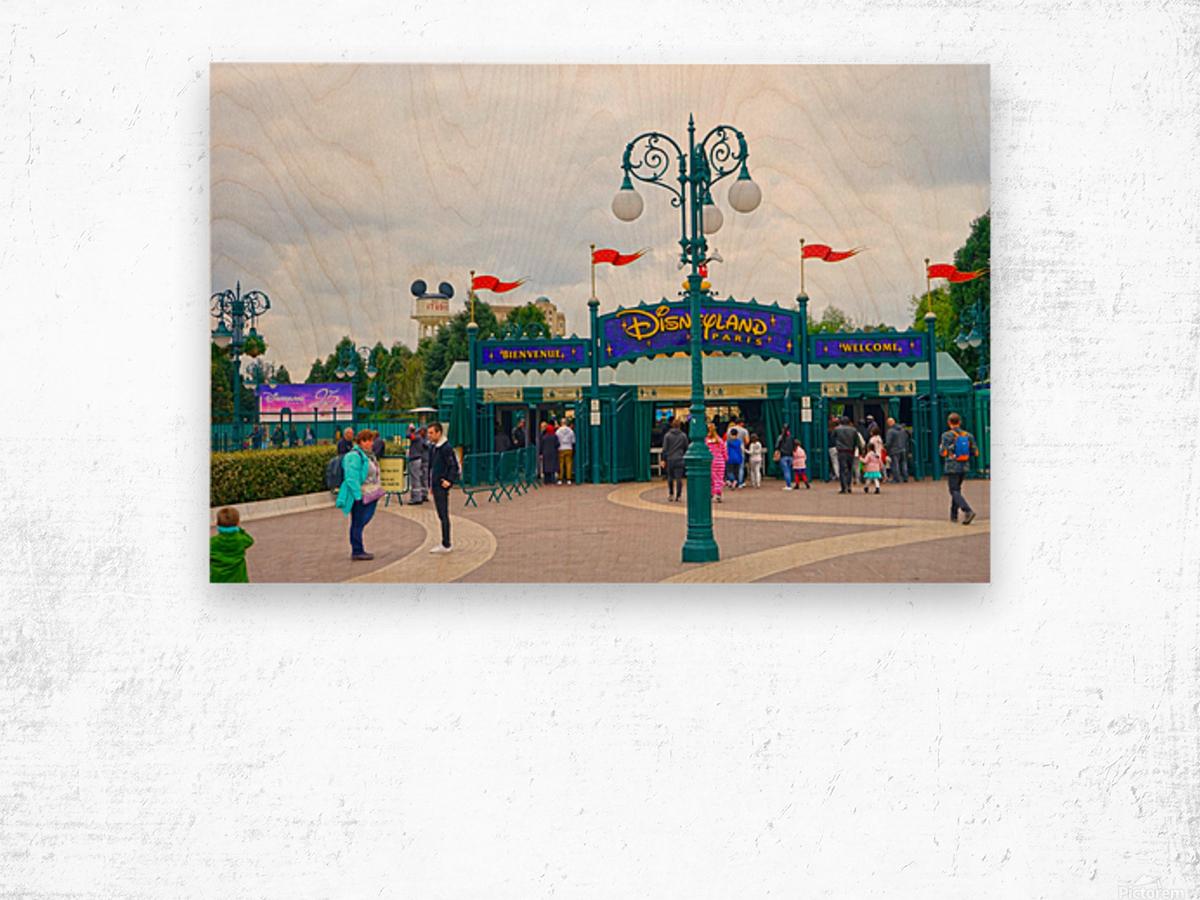 Paris Disneyland 1 of 4 Wood print