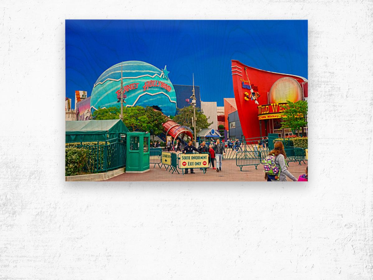 Paris Disneyland 2 of 4 Wood print
