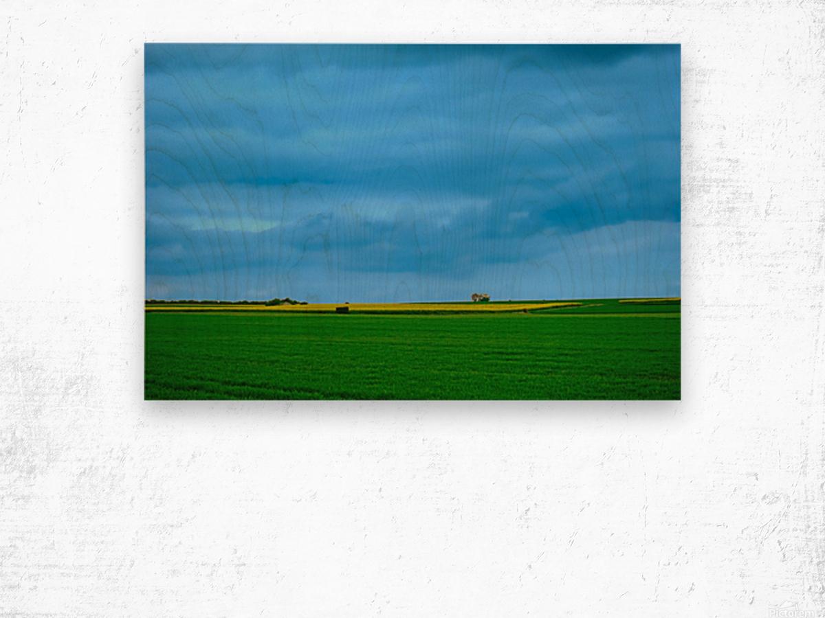 Painted Fields - 2017 Gallery Artwork of the Year - Minimalism Wood print