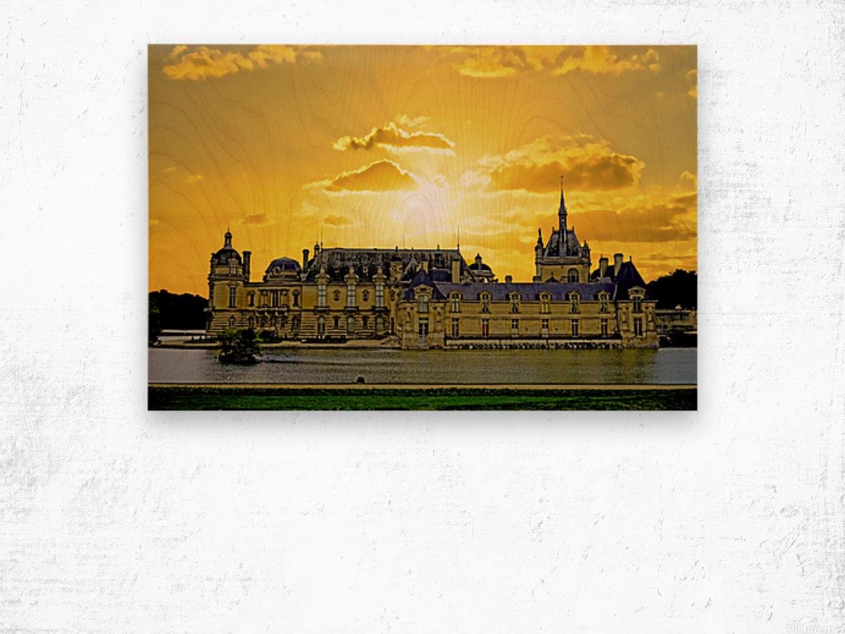 Chateau de Fontainebleau Wood print