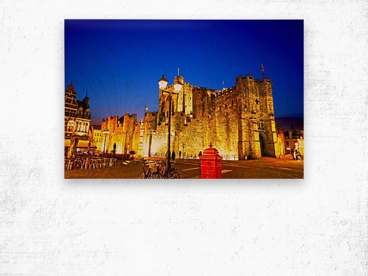 Passport to Belgium 5 of 5 Wood print
