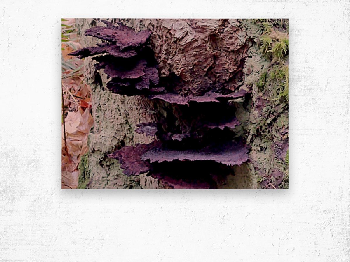 Tiny World 8 of 8 Wood print