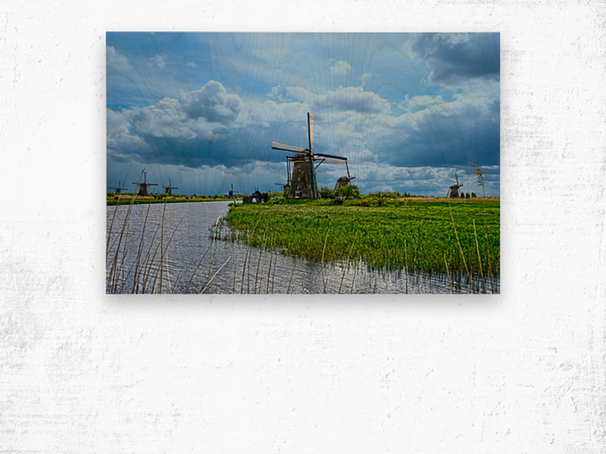 Windmills of the Netherlands 3 of 4 Wood print