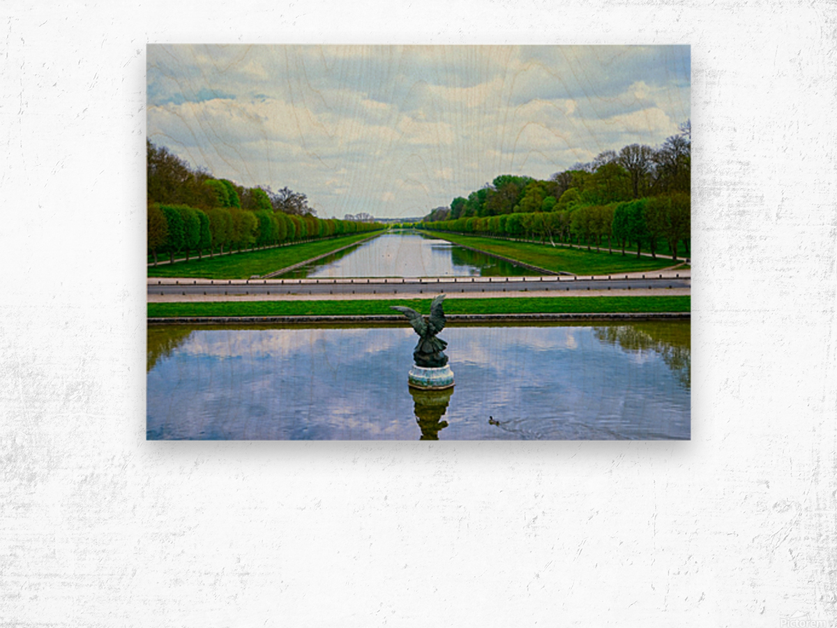 A View for Kings Chateaus of France Wood print