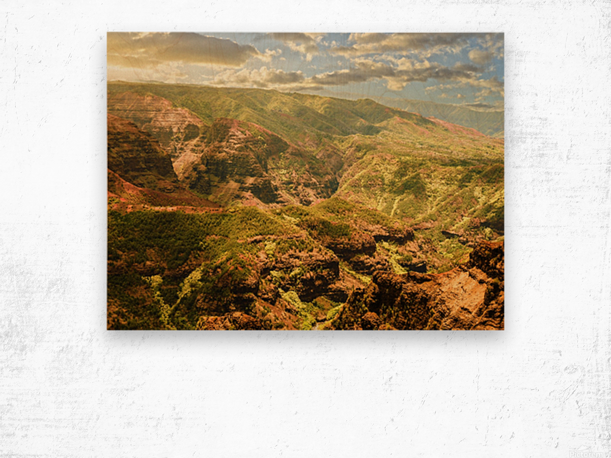 Untamed Kauai 2 of 5 Wood print