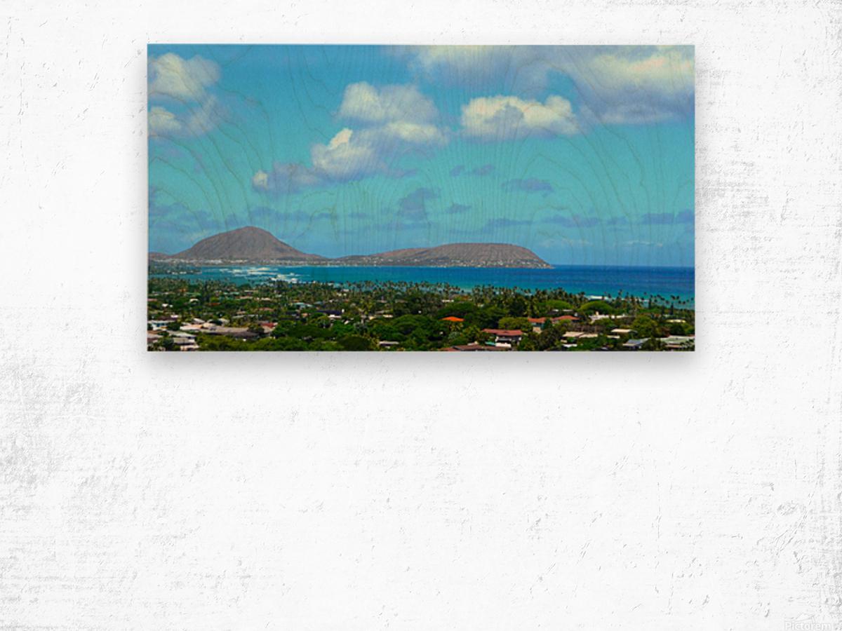 Scenic Hawaii Wood print