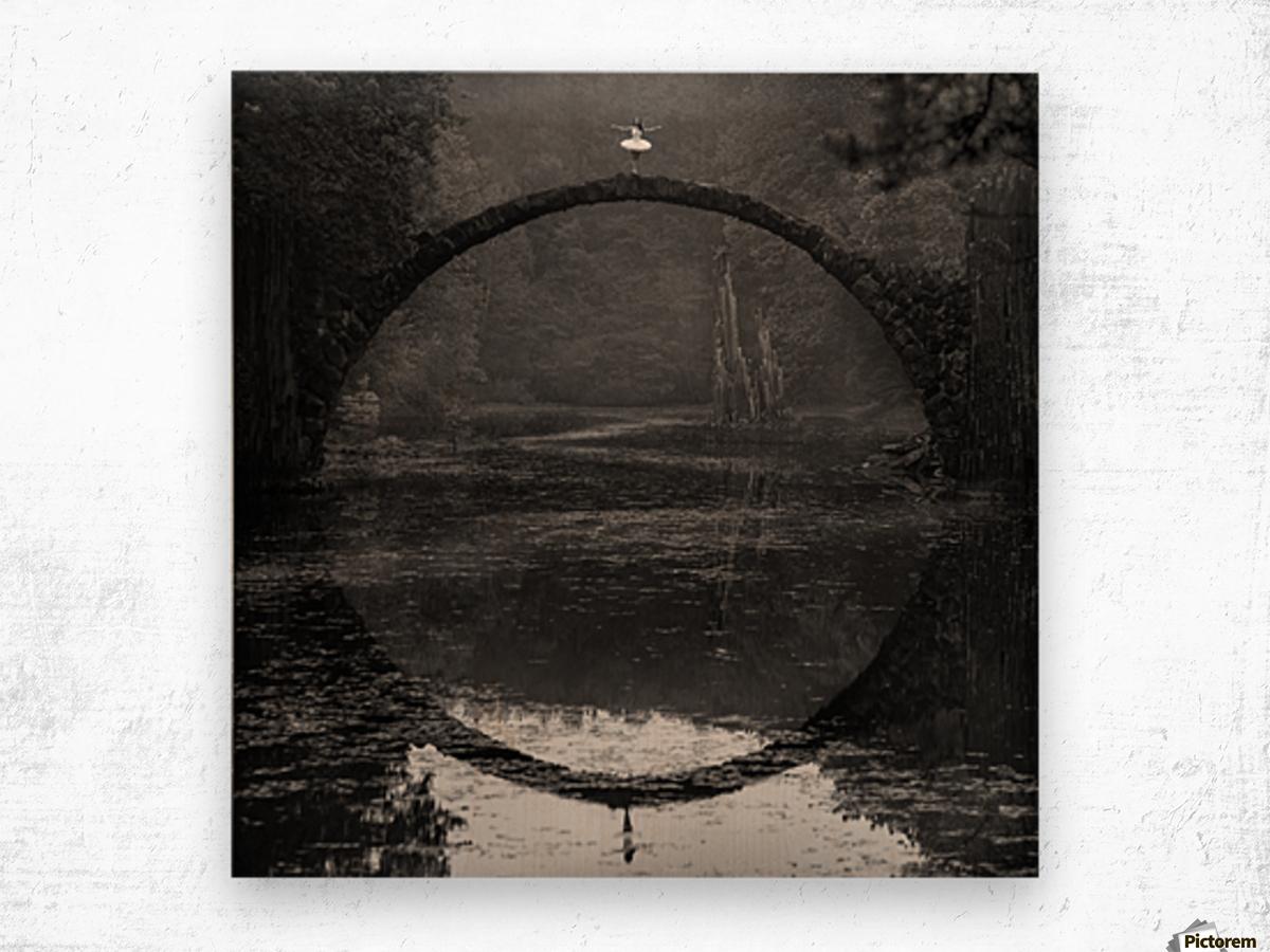 Ring Wood print