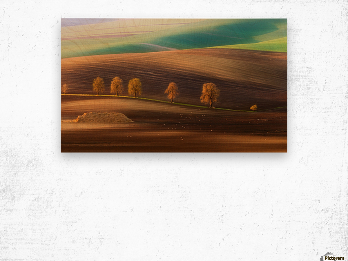 Moravian Trees Wood print